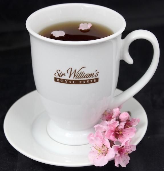 Biały kubek Sir William's Royal Taste do parzenia herbaty z pokrywką i talerzykiem